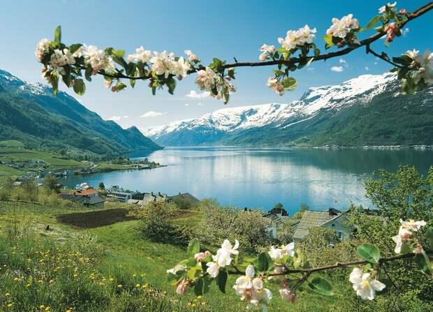 fjords18 Самые красивые фьорды Норвегии