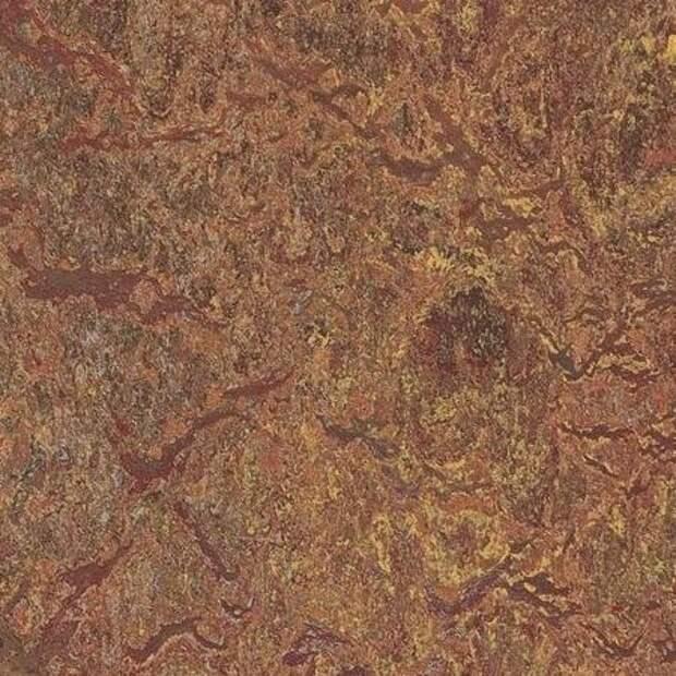 http://avian.org.ua/wp-content/uploads/naturalnyj-linoleum6.jpg