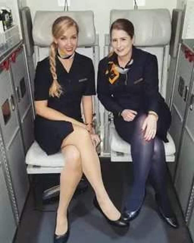 Ножки стюардесс. Подборка chert-poberi-styuardessy-chert-poberi-styuardessy-15060427022021-15 картинка chert-poberi-styuardessy-15060427022021-15