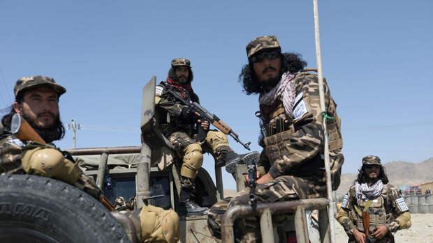 """МИД: Россия ждет, что """"Талибан"""" выполнит обещание и стабилизирует ситуацию в Афганистане"""