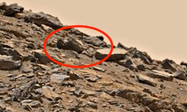 Скотт Уорринг: на снимках с Марса явно видно тело мертвого гуманоида