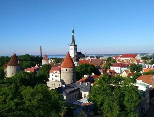 Эстония разрешила въезд из России привитым любой российской вакциной