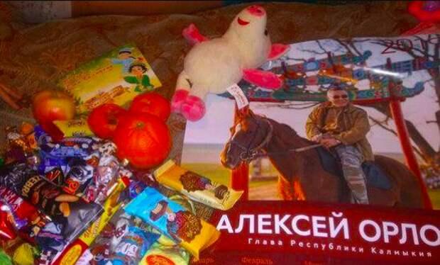 В Калмыкии детям чиновников подарили гнилые мандарины и плакат с главой региона на коне
