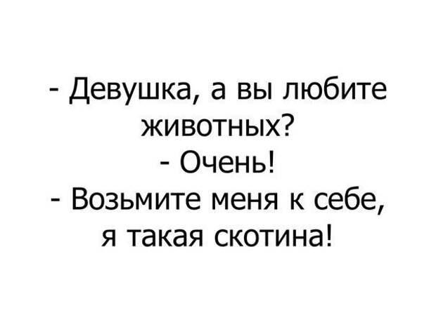 Не вступайте в ссору с женой... Улыбнемся)))