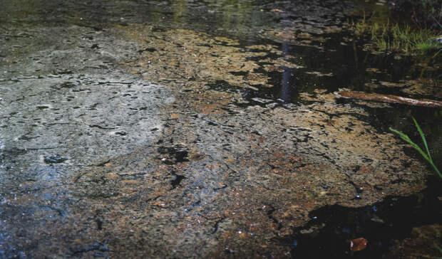 132,9млн зазагрязнение воды пытается отсудить тагильский «Водоканал» уЕВРАЗ НТМК