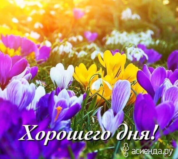 Народный календарь. Дневник погоды 13 апреля 2021 года