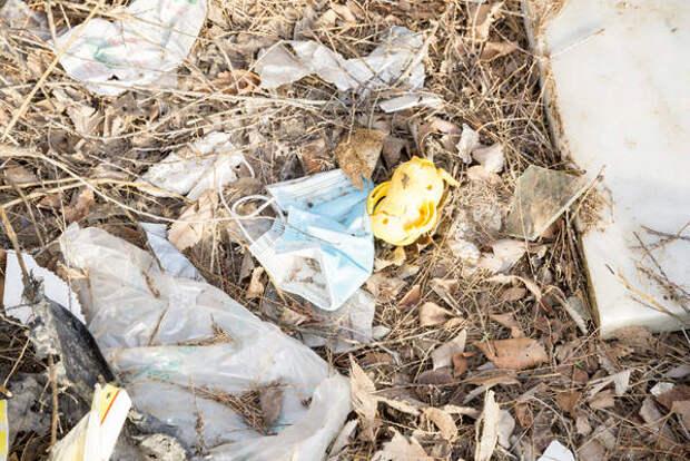 Прокуратура Новосибирска проверит регоператора из-за гор мусора в центре города