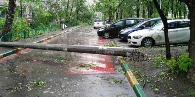 Один человек погиб и двое пострадали во время урагана в Москве