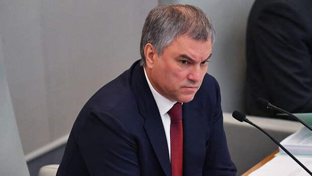 Володин призвал обсудить исключение Украины из Совета Европы