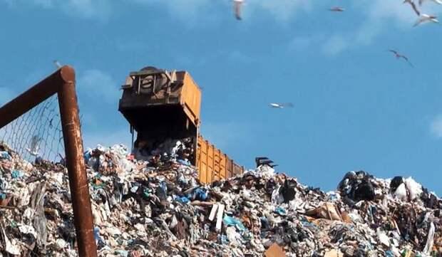 В Севастополе могут создать экотехнопарк по переработке отходов