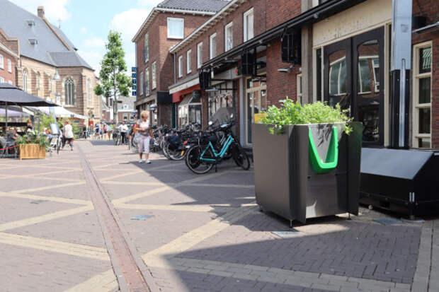 В Амстердаме устанавливают клумбы-писсуары с коноплей