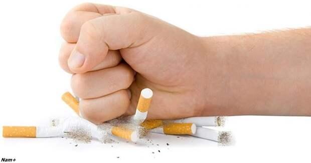 Чтобы заболеть раком лёгких, хватит всего 6 месяцев курения