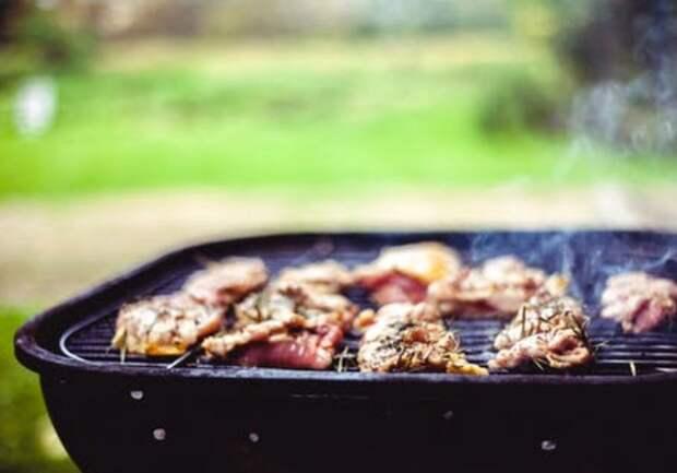 Пикник весной грозит циститом и другими проблемами со здоровьем