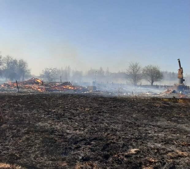 В Тверской области из-за пала травы огонь уничтожил деревню