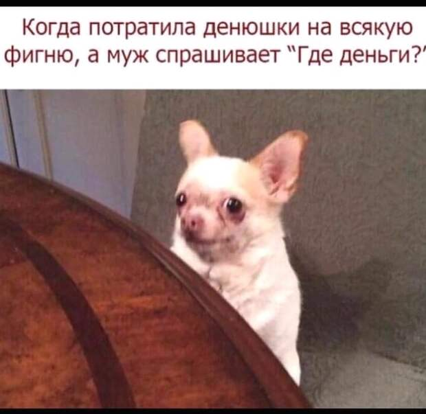 Официант с подносом подходит к клиенту ресторана:  - Кофе? Чай?...