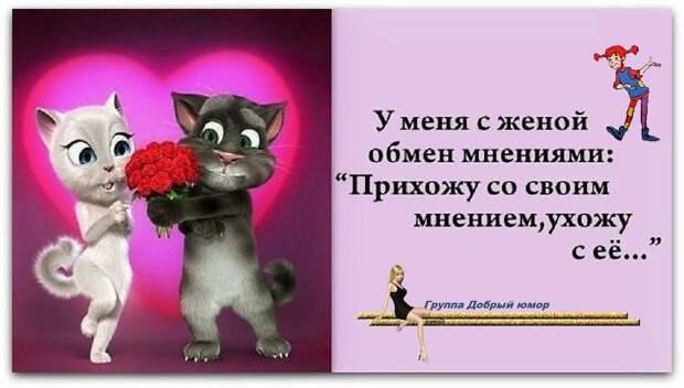 Молодая жена спрашивает мужа: — Милый, ты будешь меня любить как Ромео Джульету?..