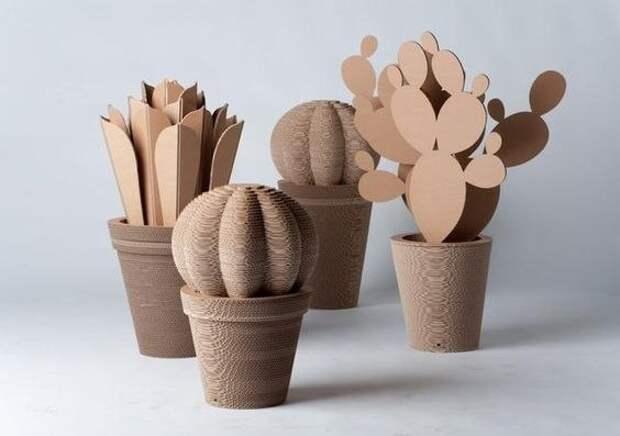 Картонные кактусы