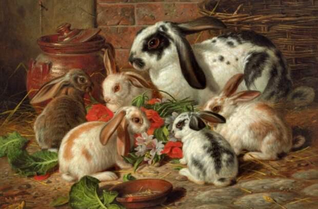 Почему на Руси употребление в пищу мяса кролика считалось грехом