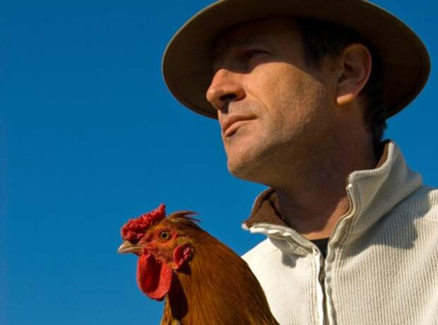 beautiful french man with hat and his colorful chicken