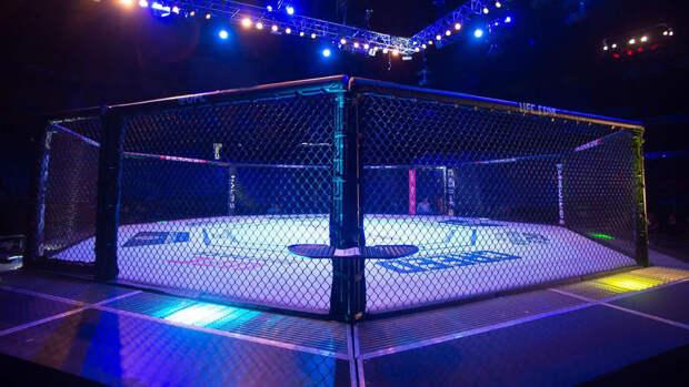 Романов судейским решением победил Эспино на турнире UFC