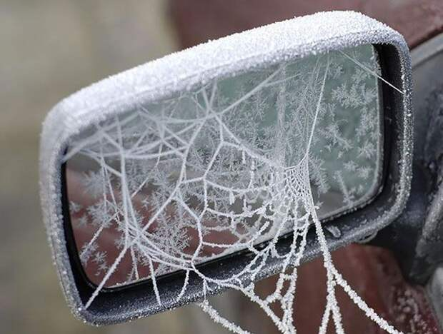 Ледяная паутина зима, красиво, мороз