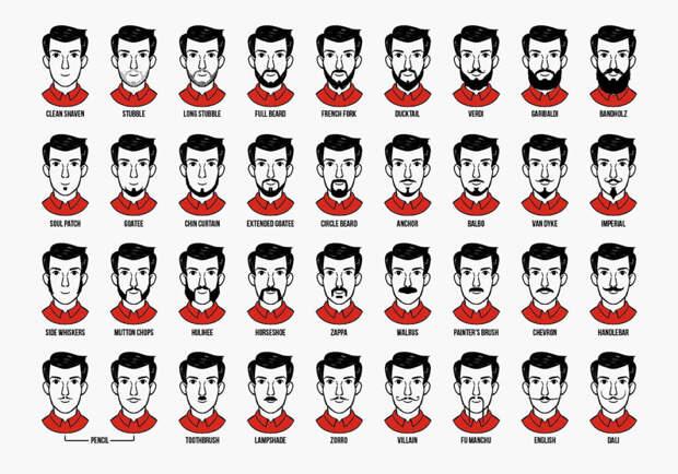 Усы и борода бесполезны с точки зрения эволюции — но зачем тогда они мужчинам?