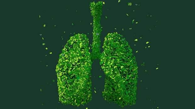 Что такое пневмония и в чем заключается ее главная опасность?