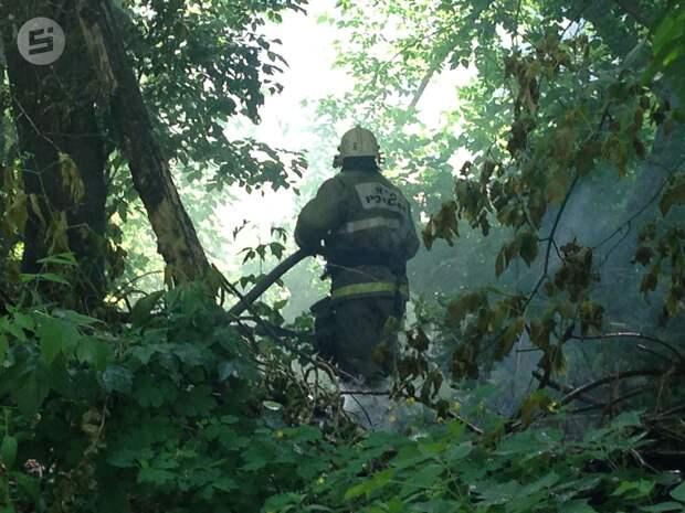 В июле в лесах Удмуртии сохранится стабильная пожарная ситуация