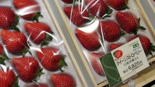 Самые дорогие фрукты в мире