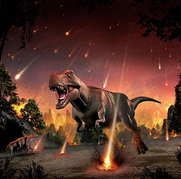 F0106923-Tyrannosaurs_fleei.jpg