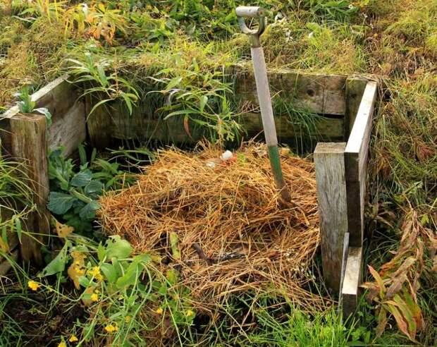 Основные ошибки при изготовлении компоста