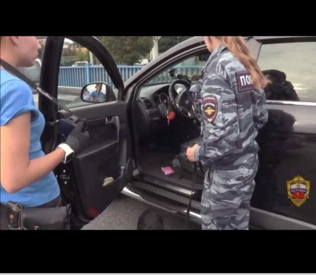 Новости полиции. Фото: УВД