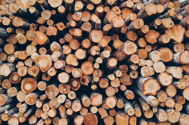 Украинцев предупредили об угрозе перехода на отопление дровами и сеном