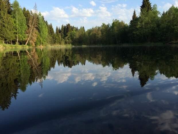 Двое пьяных мужчин утонули в Завьяловском районе в выходные