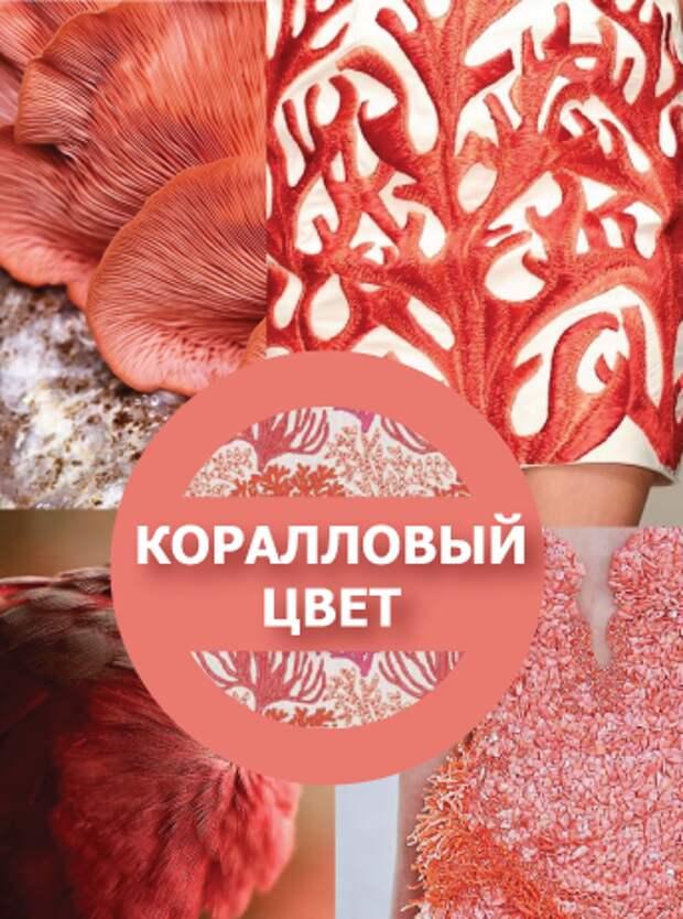 3437398_korallovyj_cvet_1 (344x463, 301Kb)