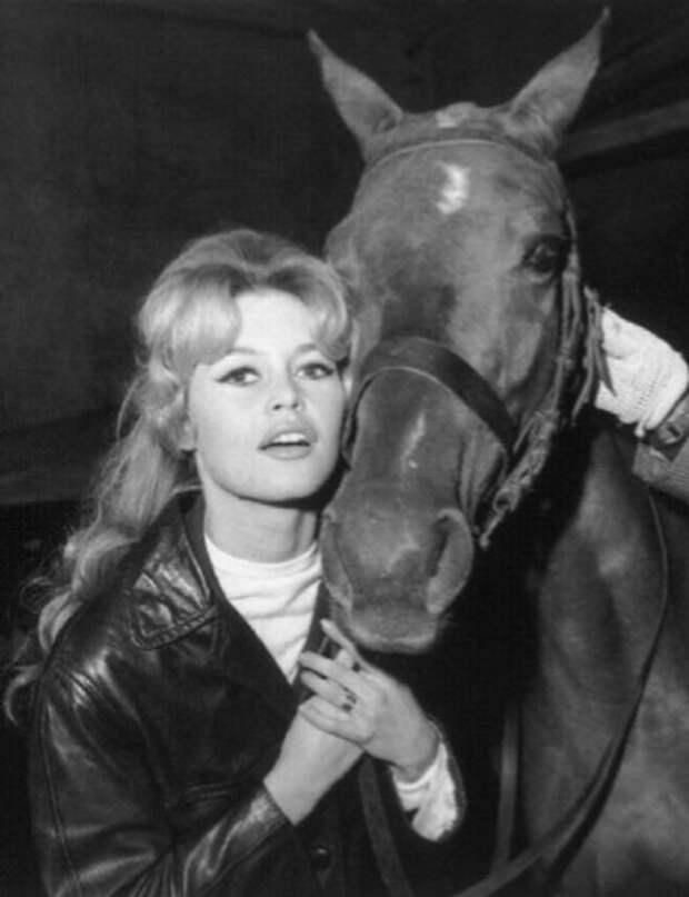 Брижит Бардо и животные (фото): лошадь / Brigitte Bardot & animals (Photos): horse