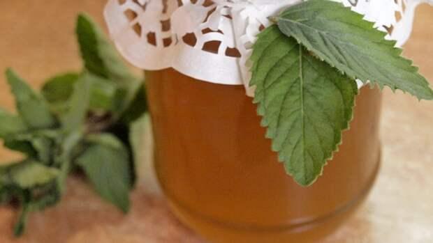 Мёд из мяты