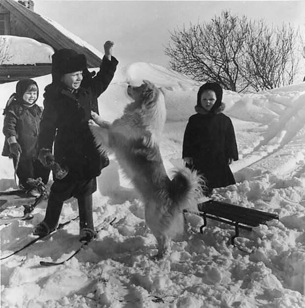 Зима сквозь призму легенд советской фотографии