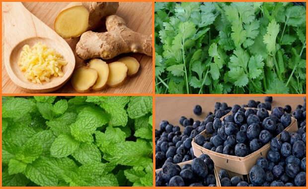 Tоп 4 природных средства для лечения диареи