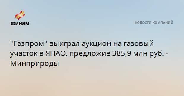 """""""Газпром"""" выиграл аукцион на газовый участок в ЯНАО, предложив 385,9 млн руб. - Минприроды"""