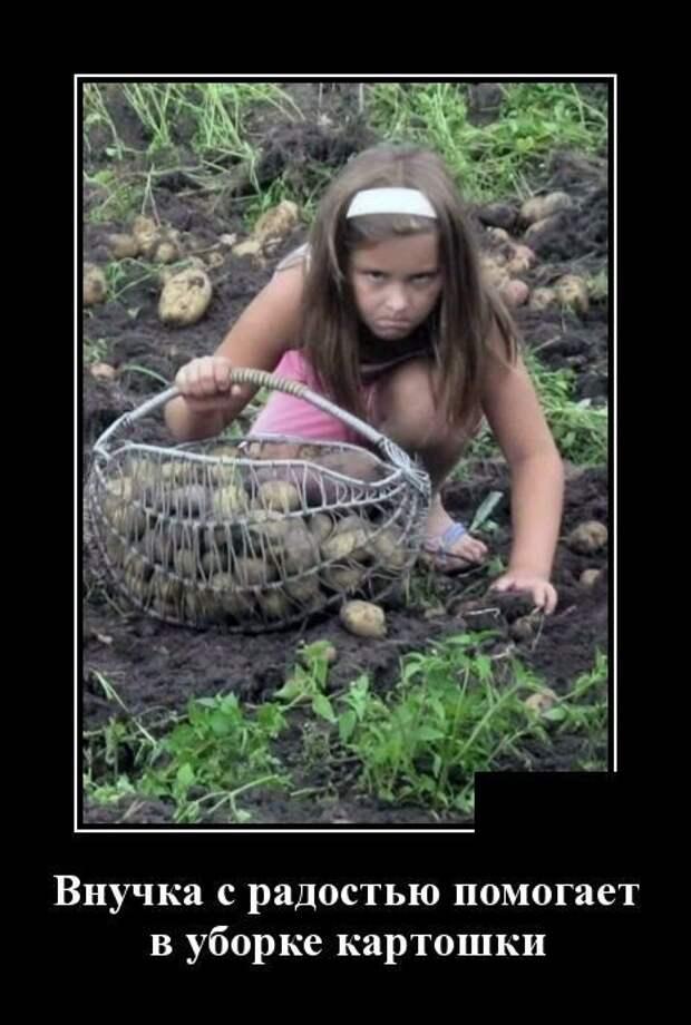 Мемы #демотиваторы #мемы #приколы #мотиваторы Узудмякящ лимакол ...
