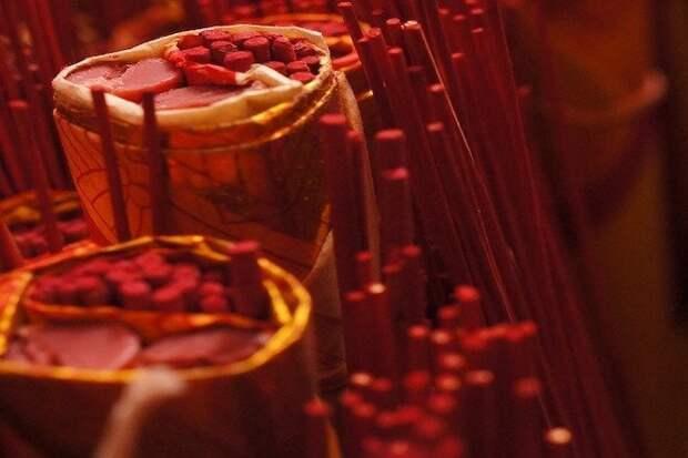 Прогрессирующая оссифицирующая фибродисплазия