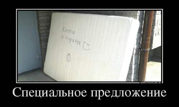 Подборка позитивных и смешных демотиваторов со смыслом (10 фото)