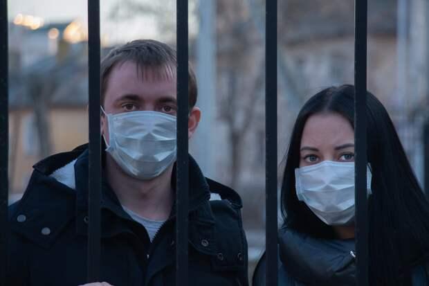 Проблему «дураков» в России предложили решить рублём