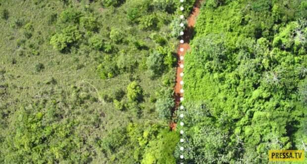 Вот во что превратилось место, куда сбрасывались отходы от апельсинов (3 фото)