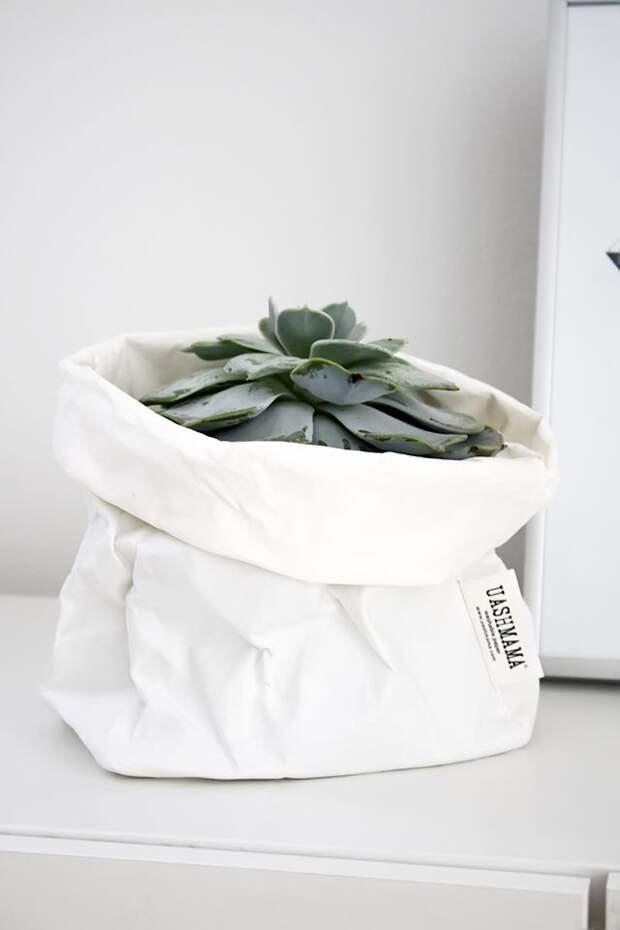 Цветы в пакетах и коробках