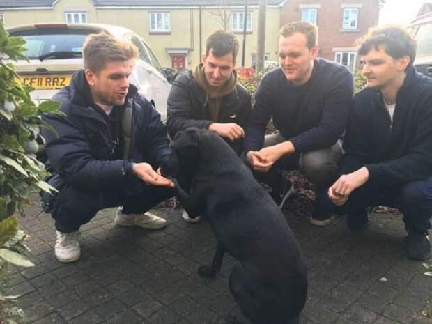 Парни и черный пес