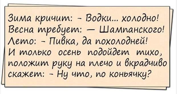 Новые прикольные анекдоты   )