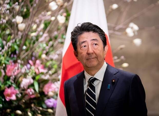 В РАН увидели угрозу заморозки отношений между РФ и Японией после ухода Абэ