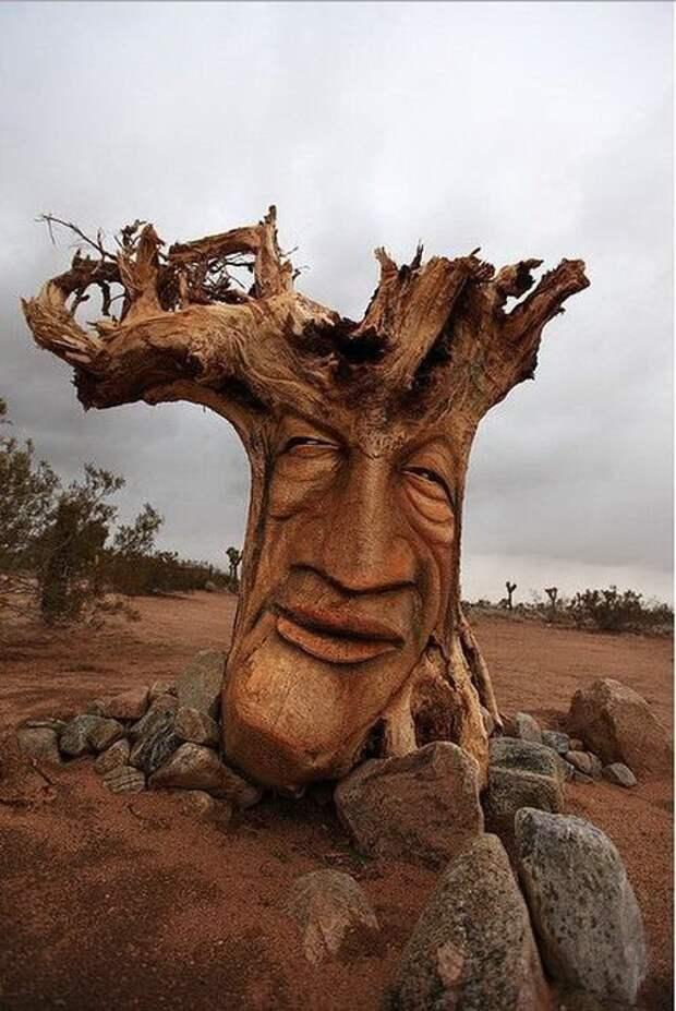 Оригинальные вещи, сделанные из дерева (23 фото)